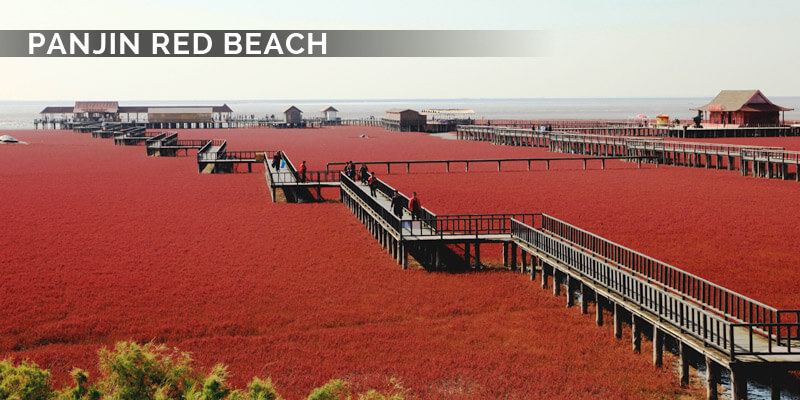 Famous Landmarks in Asia - Panjin Red Beach
