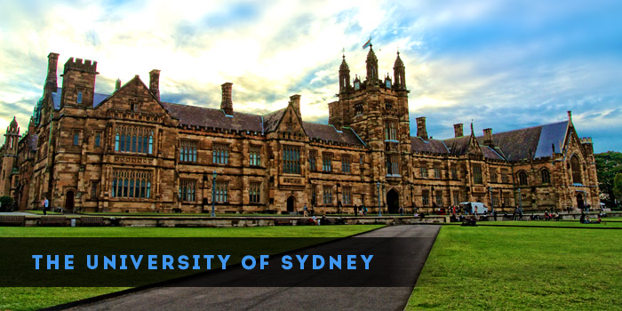 Software Engineering sydney university art