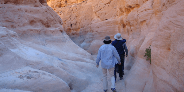 Exploring the Sinai Peninsula