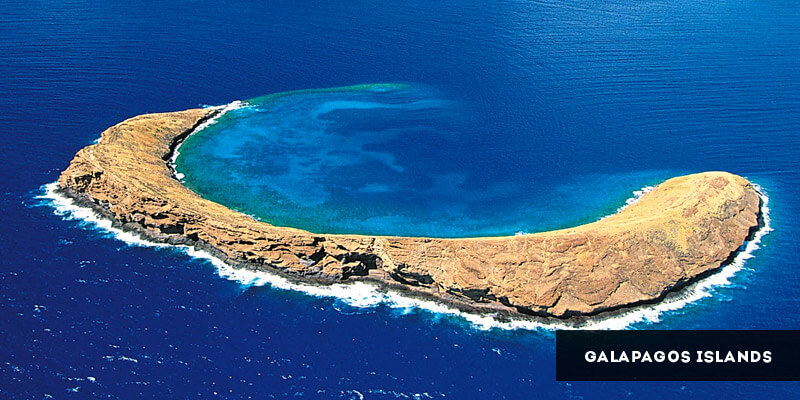 Famous Places to Visit in South America - Galapagos Islands